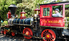 Disneyland Railroad Train