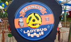 Francis' Ladybug Boogie Sign