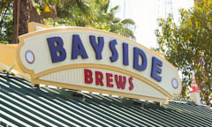 Bayside Brews